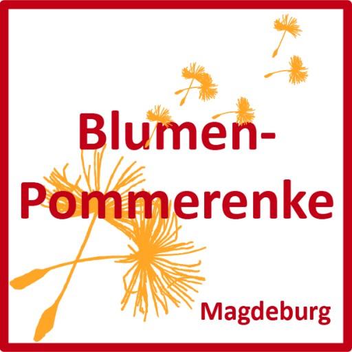 Blumen-Pommerenke Magdeburg